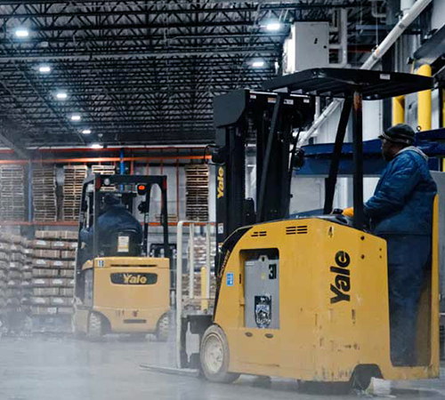 Workers operating forklifts in a cold storage warehouse.